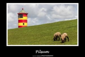 pilsum1